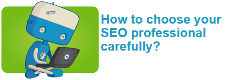 How to choose your SEO professional carefully?